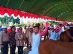 kampung IB sapi Sumenep Madura