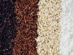 ragam beras