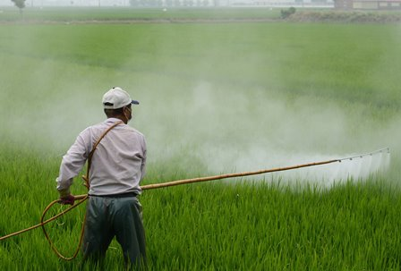 Ilustrasi Pemberian Pestisida