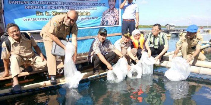 Penebaran Benih Ikan Oleh KKP